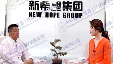 新希望集团